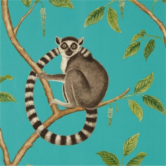 Ring tailed Lemur from Sanderson1